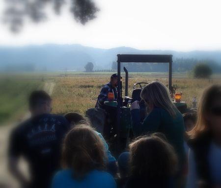 Pumpkin patch tractor 2008
