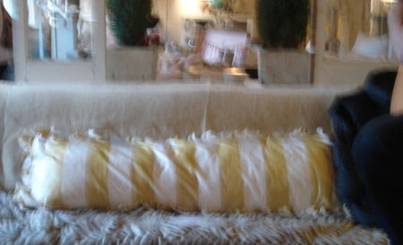 Queen of tarte yellow stripe silk pillow
