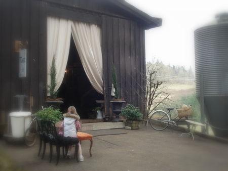 Queen of tarte- the barn!