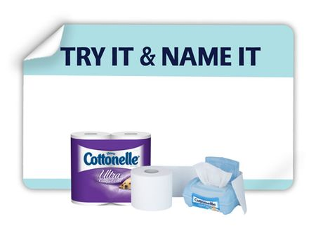 Name-it-program-logo